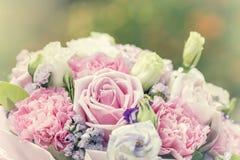 Fondo colorido de las rosas de la multiplicidad, profundidad del campo baja fotos de archivo