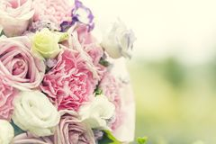 Fondo colorido de las rosas de la multiplicidad, profundidad del campo baja imagen de archivo libre de regalías