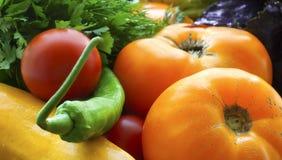 Fondo colorido de las verduras frescas Primer maduro de los vehículos Tomates, calabacín, pimiento picante e hierbas imágenes de archivo libres de regalías