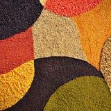 Fondo colorido de los gérmenes de cereal Foto de archivo libre de regalías