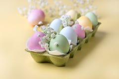 Fondo colorido de los huevos de Pascua con las flores amarillas de los huevos de Pascua del fondo de los huevos de Pascua Imágenes de archivo libres de regalías