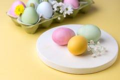 Fondo colorido de los huevos de Pascua con las flores amarillas de los huevos de Pascua del fondo de los huevos de Pascua Imagen de archivo libre de regalías