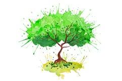 Fondo colorido del árbol del vector verde de la acuarela Imagen de archivo libre de regalías
