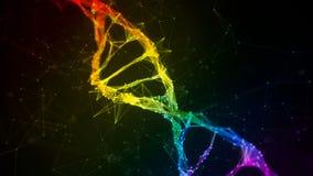 Fondo colorido del lazo del arco iris de Digitaces del plexo de la DNA del filamento iridiscente de la molécula almacen de metraje de vídeo