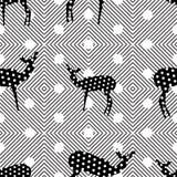 Fondo colorido inconsútil hecho de líneas y de la silueta de la hormiga Imagen de archivo