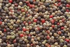Fondo colorido mezclado del grano de pimienta Cierre para arriba Foto de archivo