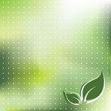 Fondo colorido verde Fotos de archivo