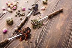 Fondo con differenti tipi di foglie di tè Immagine Stock