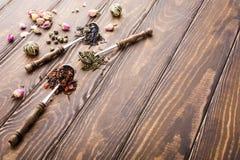 Fondo con differenti tipi di foglie di tè Fotografia Stock Libera da Diritti