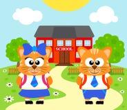 Fondo con el gato, de nuevo a escuela Imagenes de archivo