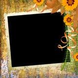 Fondo con el marco y las flores Fotos de archivo