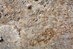 Fondo con el muro de cemento con moho imagenes de archivo