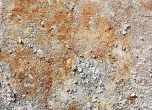 Fondo con el muro de cemento con moho foto de archivo libre de regalías