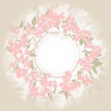 Fondo con el ramo rosado Imagenes de archivo