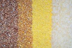 Fondo con i cereali grano saraceno, grano, miglio, riso fotografie stock