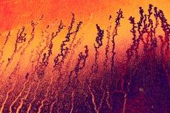 Fondo con i colori caldi con le forme complesse Fotografia Stock