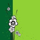 Fondo con i fiori Immagini Stock