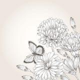 Fondo con i fiori Fotografie Stock Libere da Diritti