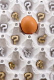 C'sarà più uova? Immagini Stock