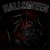 Fondo con i ragni ed il web Halloween Fotografie Stock