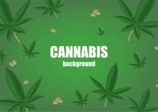 Fondo con i semi e la pianta della cannabis della canapa Superfood Cosmetico e pianta medicinale Illustrazione realistica di vett royalty illustrazione gratis