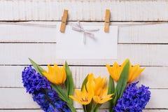 Fondo con i tulipani, i giacinti ed il Empty tag freschi fotografia stock libera da diritti