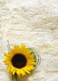 Fondo con il fiore fotografia stock