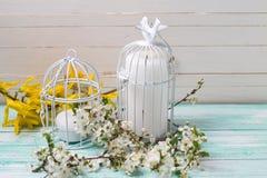 Fondo con il fiore bianco della molla degli alberi e delle candele Fotografie Stock Libere da Diritti