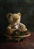 Fondo con l'orso ed i coni molli Fotografie Stock Libere da Diritti