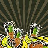 Fondo con la fruta tropical Foto de archivo libre de regalías
