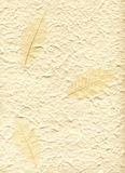 Fondo con la hoja decorativa de la tela Imagen de archivo