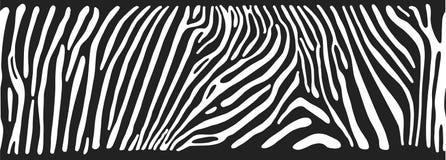 Fondo con la pelle della zebra Fotografia Stock Libera da Diritti