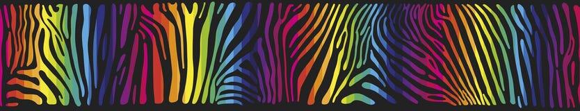 Fondo con la pelle della zebra nei colori dell'arcobaleno Fotografie Stock Libere da Diritti
