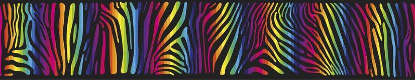 Fondo con la pelle della zebra nei colori dell'arcobaleno Fotografia Stock Libera da Diritti
