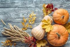 Fondo con las calabazas, los oídos del trigo y las hojas de otoño en gra Foto de archivo libre de regalías