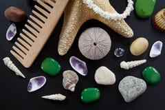 Fondo con las diversas cáscaras y estrellas de mar Imágenes de archivo libres de regalías
