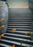 Fondo con las escaleras y el goldfish. Foto de archivo libre de regalías