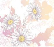 Fondo con las flores foto de archivo