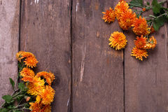 Fondo con las flores amarillas del otoño Fotografía de archivo libre de regalías