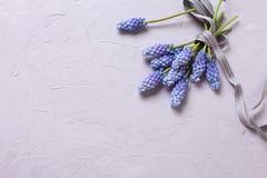 Fondo con las flores azules Imagen de archivo libre de regalías