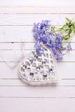 Fondo con las flores azules blandas frescas y el corazón decorativo Fotografía de archivo