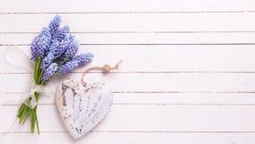 Fondo con las flores azules de los muscaries y corazón decorativo en w Imágenes de archivo libres de regalías