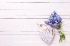 Fondo con las flores azules de los muscaries y corazón decorativo en w Fotografía de archivo libre de regalías