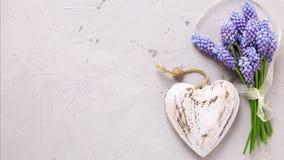 Fondo con las flores azules de los muscaries y el corazón decorativo Imagenes de archivo