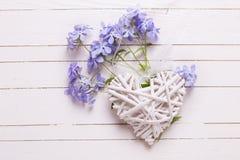 Fondo con las flores azules y el corazón decorativo Fotos de archivo libres de regalías