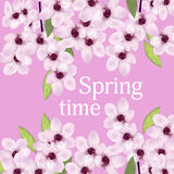Fondo con las flores de la primavera de Sakura, o cereza Vector Fotos de archivo libres de regalías