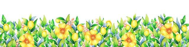 Fondo con las flores del amarillo de la acuarela libre illustration