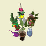 Fondo con las flores y las regaderas hechas en casa Ilustración del Vector
