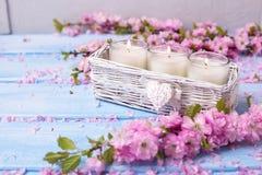 Fondo con las flores y las velas de Sakura Foto de archivo