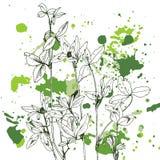 Fondo con las hierbas y las flores del dibujo Imagenes de archivo